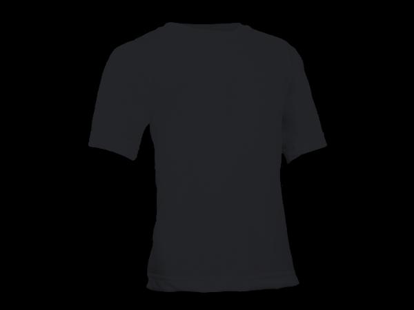Camiseta lisa 100% algodão colorida Adulto